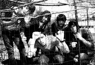 ED-2010-caged